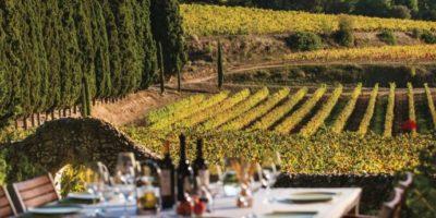 Vinprovning med egen bil i Katalonien